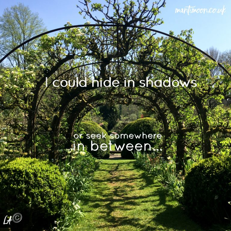 Photo of the week: gardens with overhead open tunnel above. Words: I could hide in the shadows or I could seek somewhere in between written on the photo.